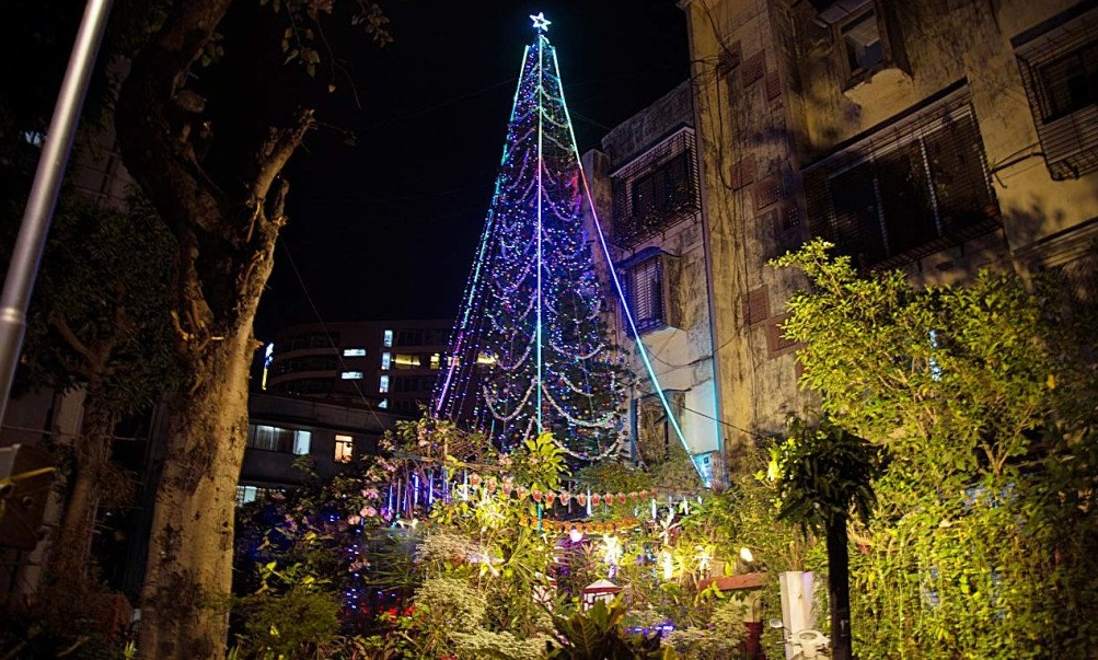 65 ft tall indias tallest christmas tree becoming attraction of many visitors - 65ft Christmas Tree