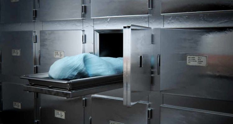 Dead woman turned alive, Woman found alive in morgue, South Africa, World news, Weird news, Offbeat news