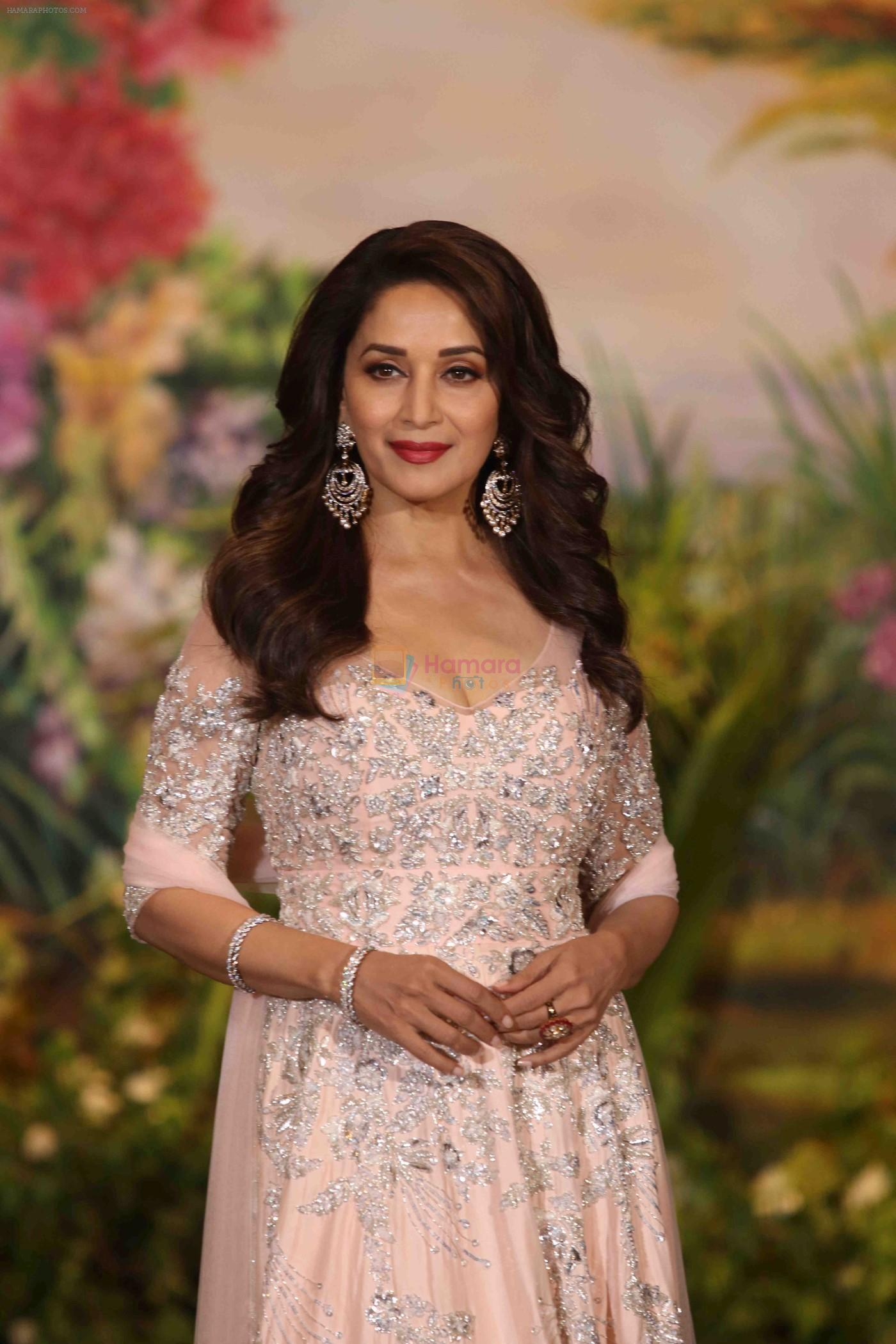 Madhuri Dixit, Lok Sabha elections, Bollywood actress, Bharatiya Janata Party, BJP, Entertainment news, Bollywood news, Politics news
