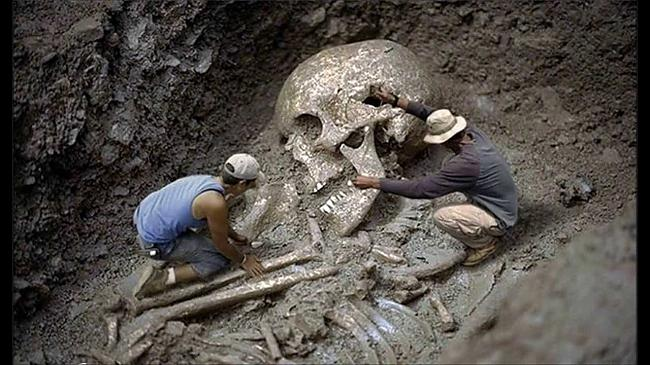 Human-species-fossils-1.jpg