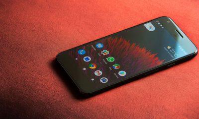 Google, Google Home, Google Pixel XL, Google Store, Smartphone, Gadget news, Technology news