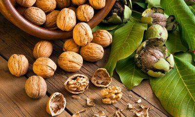 Walnuts, Salmon, Canola oil, PUFAs, PUFA-rich diet, Tuna, Flaxseed oil, Grape-seed oil, Health news