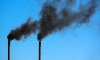 Breathing dirty air may harm kidneys