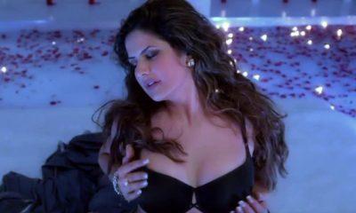 Zareen Khan, Salman Khan, Hate Story 3, Veer, Ready, Housefull, Bollywood actress, Bollywood news, Entertainment news