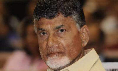 Chandrababu Naidu, Narendra Modi, Telugu Desam Party, TDP, BJP, NDA, YSR Congress, Andhra Pradesh, National news