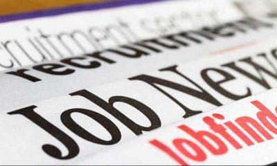BoB, NABARD, RRB, Sangli Urban Co-Operative Bank Ltd, Regional Rural Banks, Bank of Baroda, Latest Bank Jobs Recruitment Notifications, Bank jobs, Business news, Education news, Career news