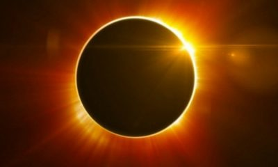 Lunar Eclipse, Solar Eclipse, Moon Carnival, Blood Moon, Chandra Grahan. Zodiac signs, Astrologer, Lifestyle news, Offbeat news