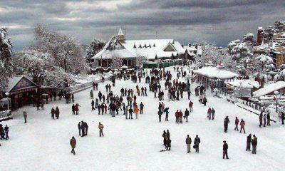 Cold, Winter, Snowfall, Manali, Narkanda, Shimla, North India, Himachal Pradesh, National news