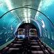China, Undersea tunnel, High speed trains, International rail link, Hong Kong, World news