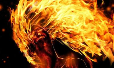 Woman, Children, Woman kills children, Woman sets herself on fire, Woman after fight with husband, Ballia, Uttar Pradesh, Regional news, Crime news