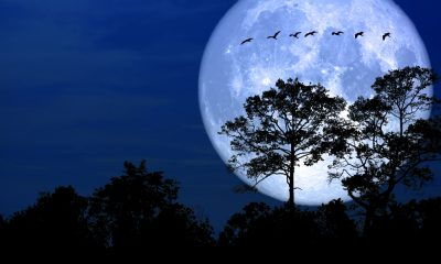 Snowmoon, Astronomers, North America, America, United States, Science and Technology news