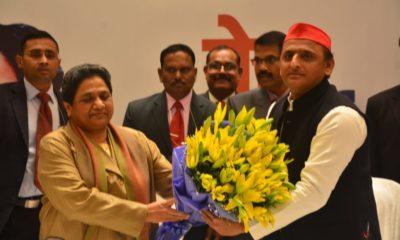Akhilesh Yadav, Mayawati, Keshav Prasad Maurya, Mulayam Singh Yadav, SP-BSP alliance, BSP-SP alliance, SP-BSP-RLD alliance, Lok Sabha polls, Lok Sabha elections, General elections, Uttar Pradesh, Politics news