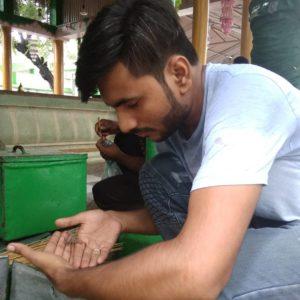 Syed Sharfuddin Shah Wilayat, Scorpions, Shrine, Dargah, Amroha, Uttar Pradesh news, Regional news, Religion news, Spiritual news