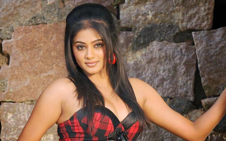 Vidya Balan, Priyamani, Priya Vasudev Mani Iyer, Mustafa Raj, South Indian actress, Bollywood actress, Entertainment news